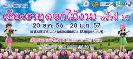 เทศกาลเชียงรายดอกไม้งาม ครั้งที่ 10 ปี 2557